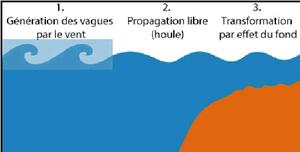 Houle vague et mer de vent le nageur sauveteur - Formation a distance diplomante reconnue par l etat ...